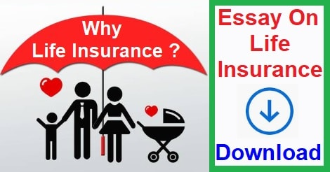 Why Life Insurance Is Important, Life Insurance, Essay On Life Insurance, Paragraph On Life Insurance, Life Insurance Tips